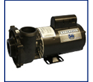 Replacement Spa Pump