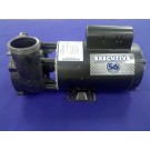 Waterway Executive Pump, 2 Speed