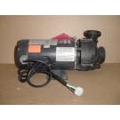 Pump 3.6 horsepower, 1 speed Sta-Rite / Pentair, X321270